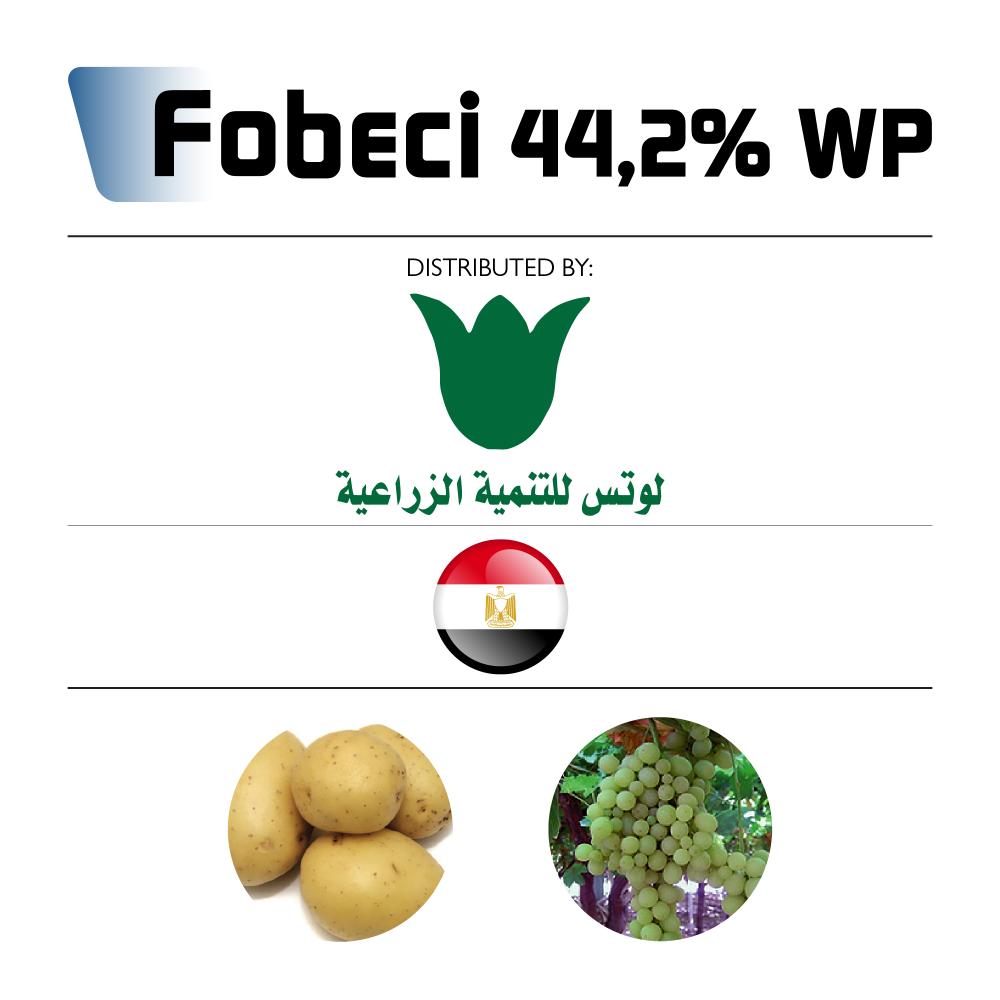 Fobeci 44,2% WP