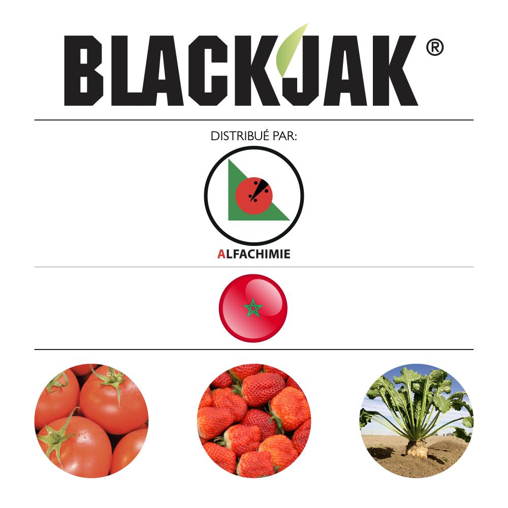 Blackjak