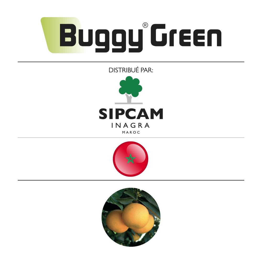 Buggy Green