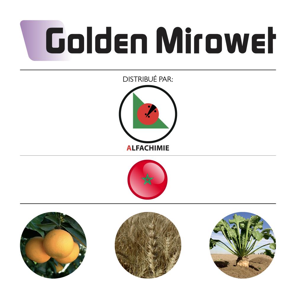 Golden Mirowet