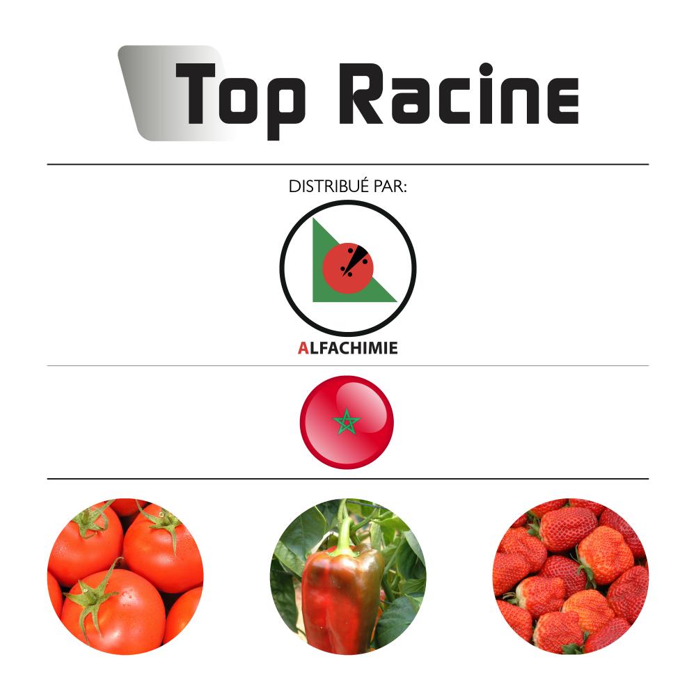Top Racine