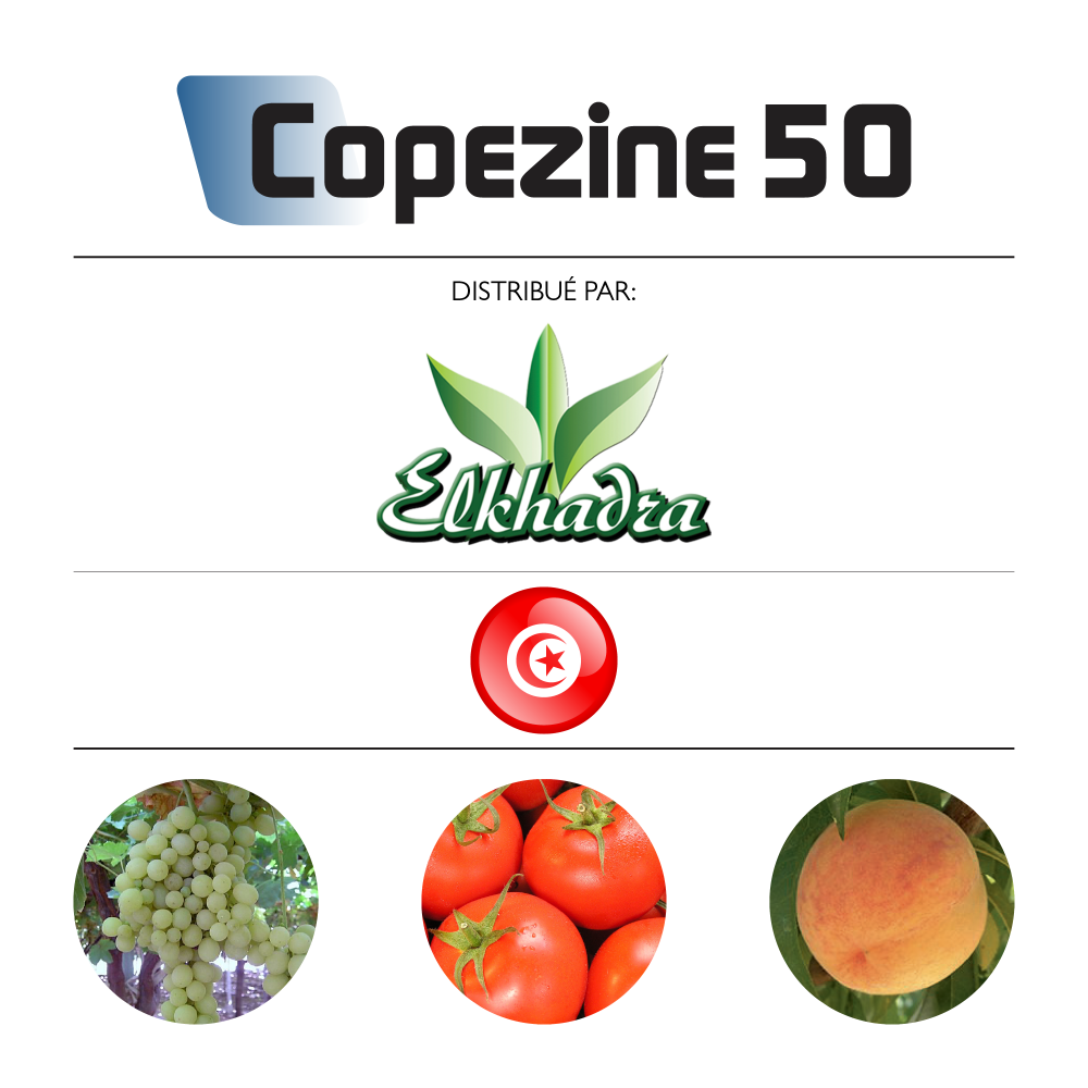 Copezine 50