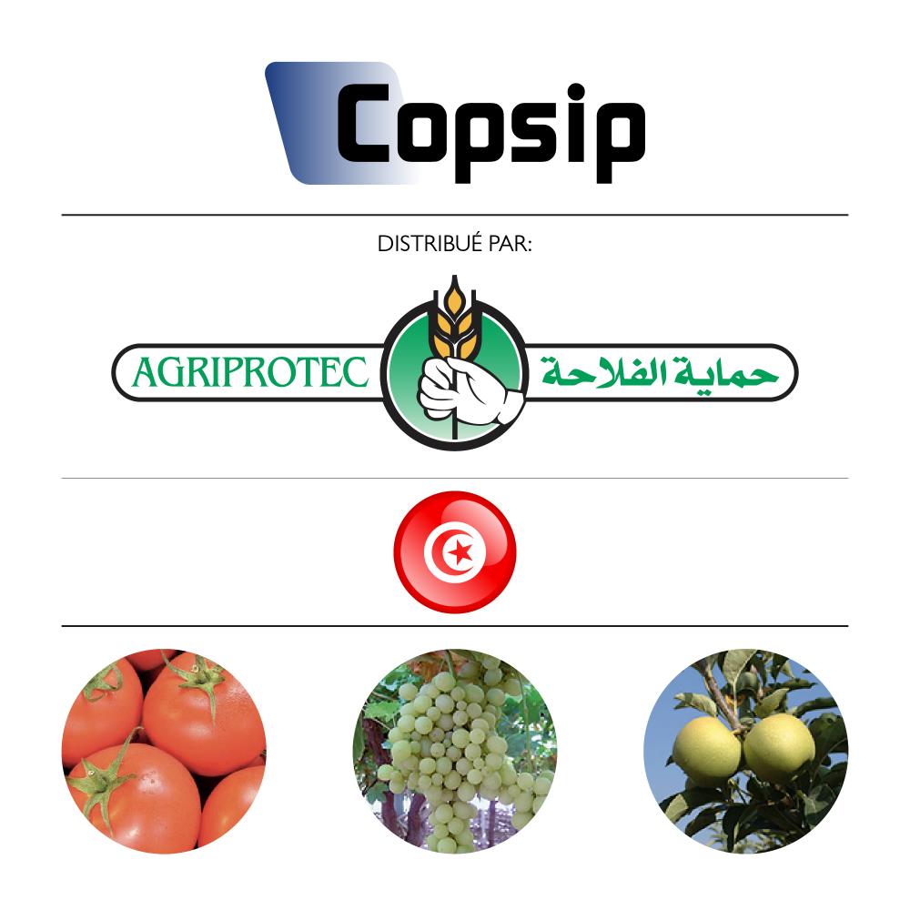 Copsip