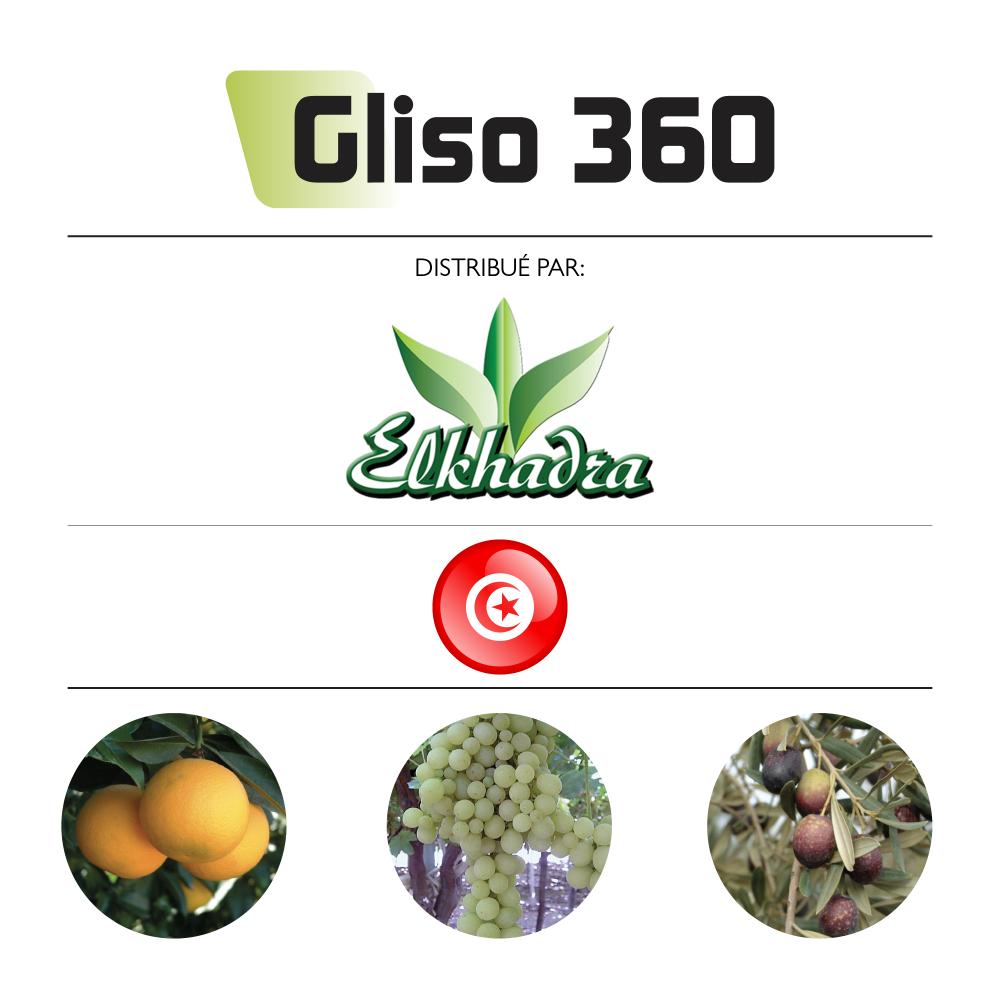 Gliso 360