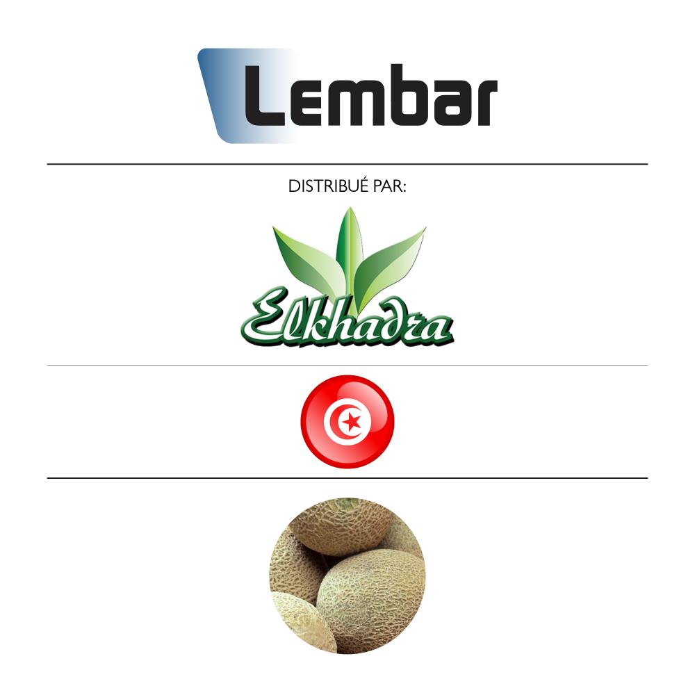 Lembar