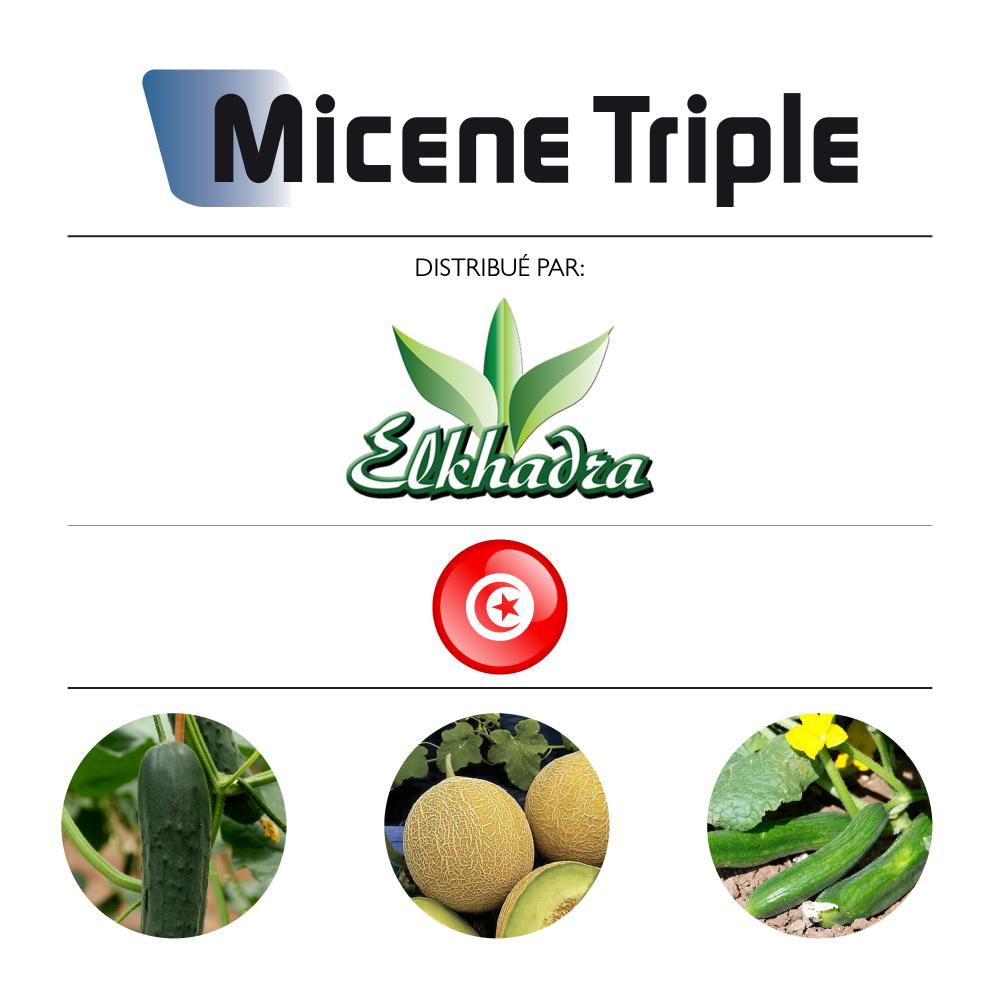 Micene Triple