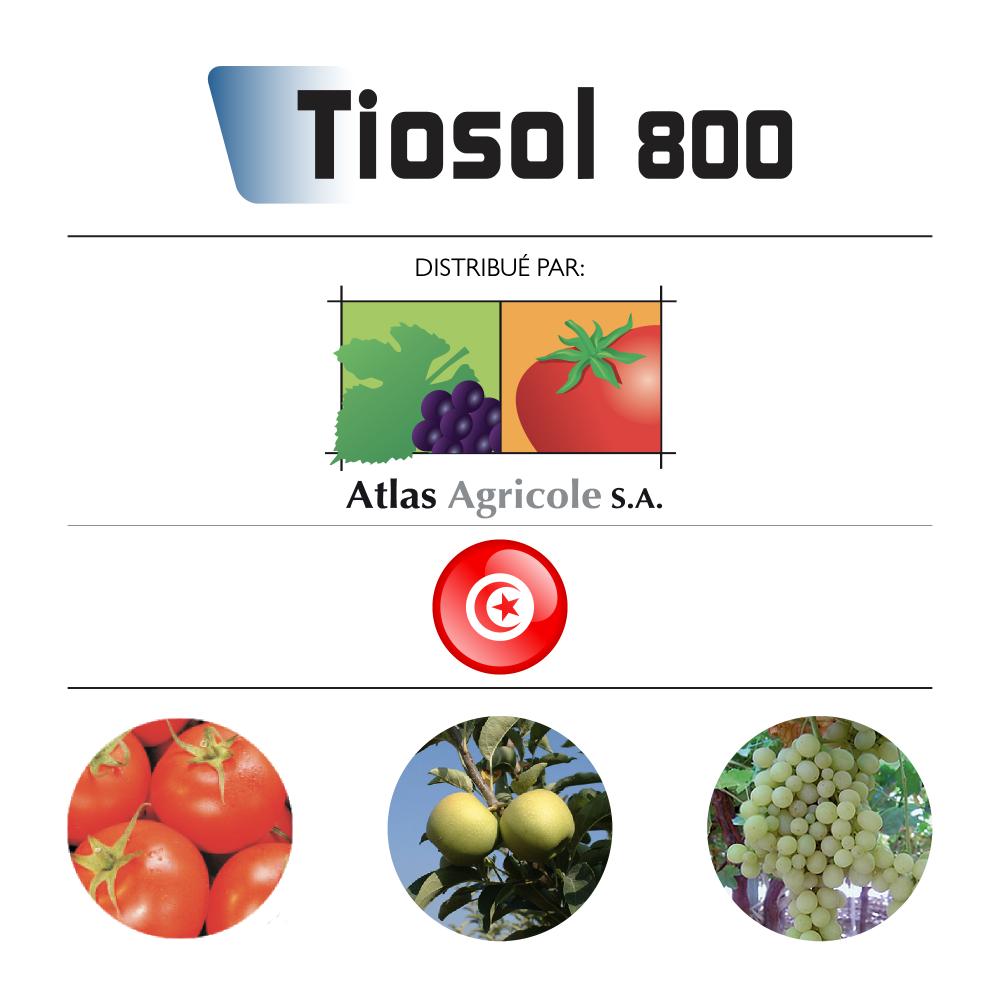 Tiosol 80