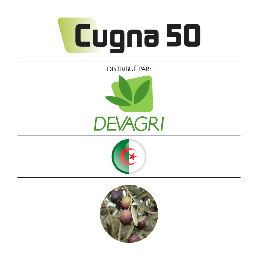 Cugna 50