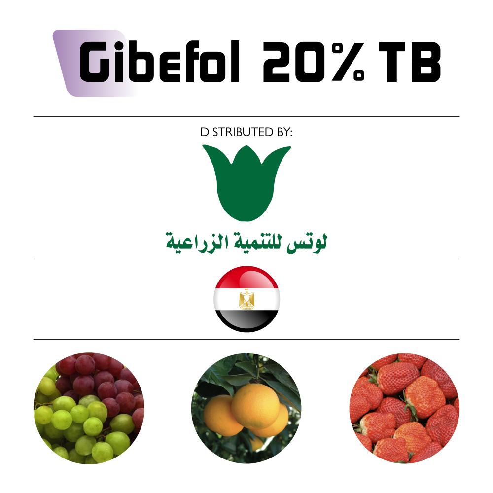Gibefol 20% TB