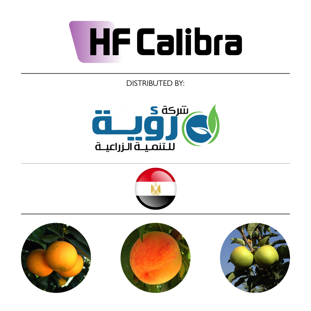HF Calibra